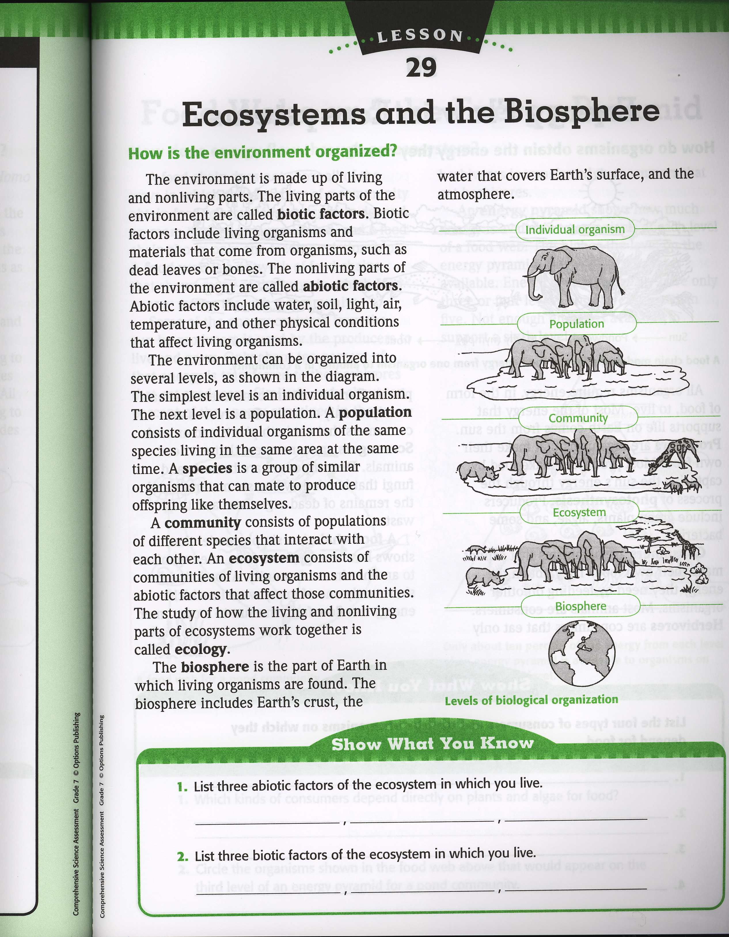 Ecology Levels Of Organization Worksheet Delibertad – Levels of Organization Worksheet